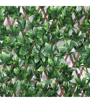 Brise vue Treillis Extensible  LAURIER Palme 1 x 2 M