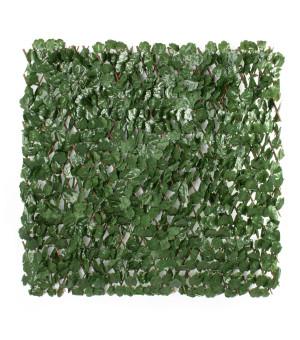 Brise vue Treillis Extensible  Lierre Sauvage 1 x 2 M