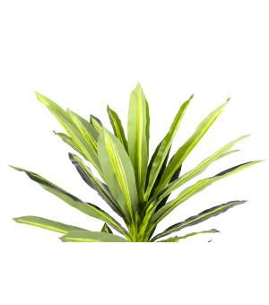 Plante Artificielle Dracaena  Hauteur 160 cm