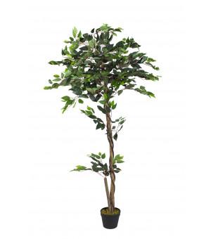 Plante  Artificiel Ficus Hauteur 160 cm