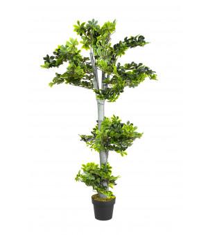 Plante Artificielle  Bonsaï Hauteur 155 cm