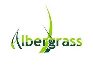 Albergrass